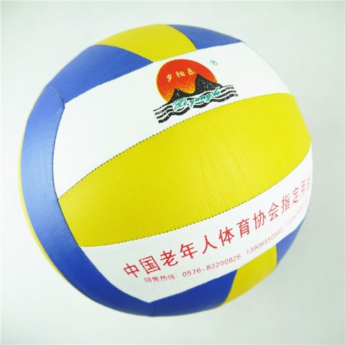 Ballon de volley-ball - Ref 2007911