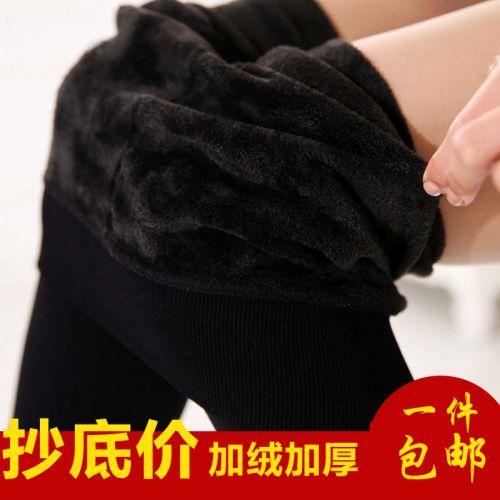 Pantalon collant 755621