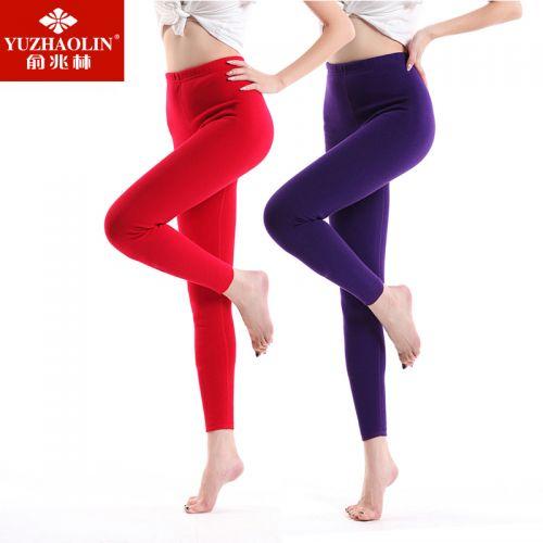 Pantalon collant 774020